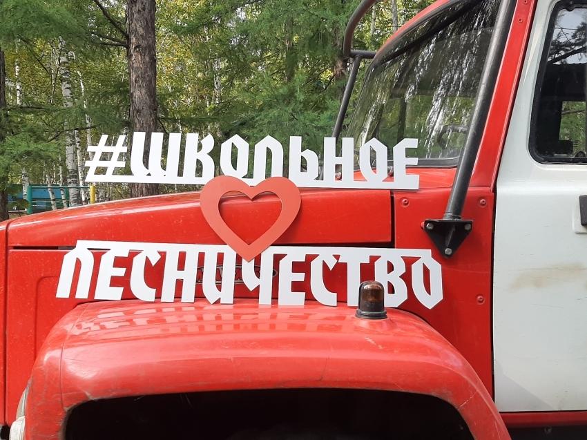 В Забайкальском крае пройдёт слёт юных экологов и членов школьных лесничеств