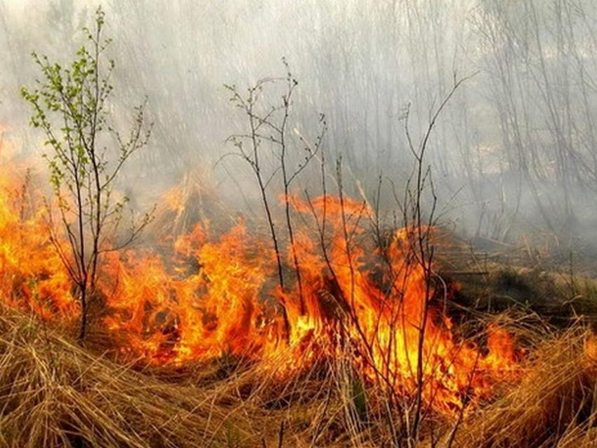 Лесопожарные формирования Забайкалья тушат пожар в Дульдурге