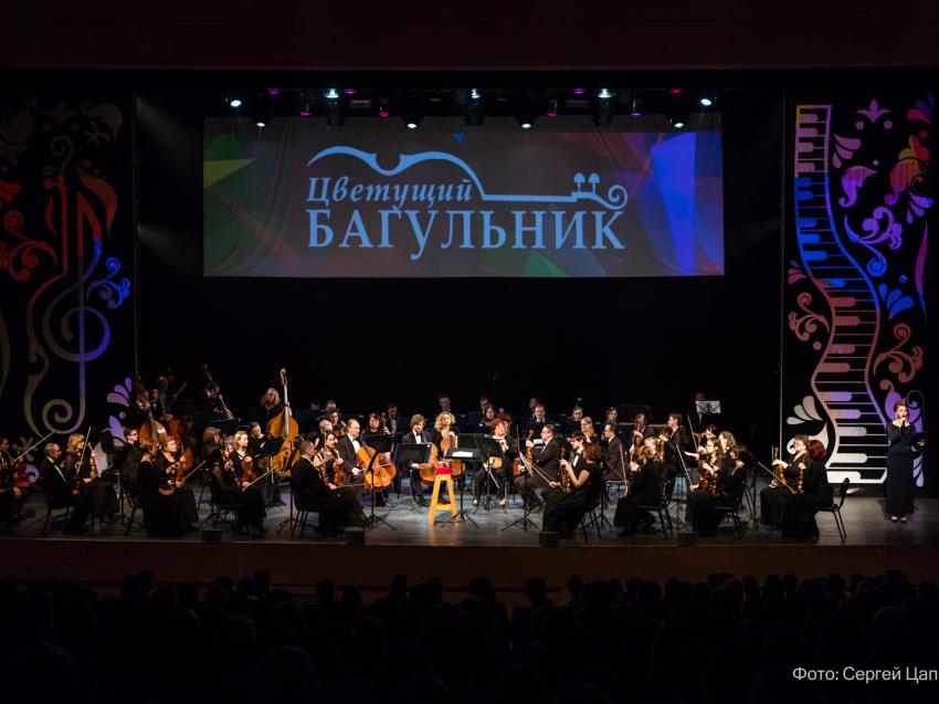 Международный фестиваль искусств «Цветущий багульник» откроется в Чите