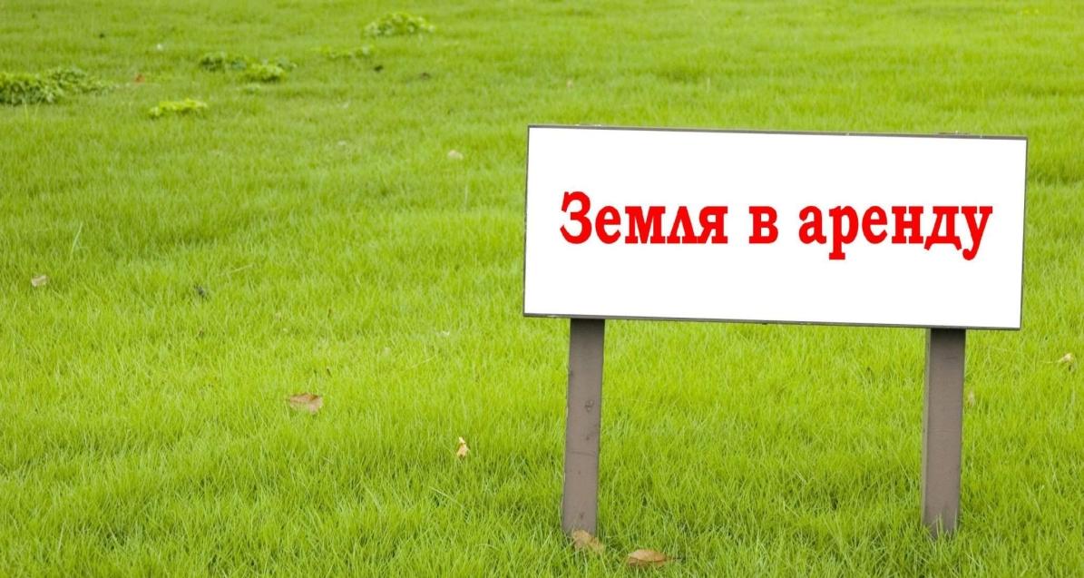 Комитет по управлению муниципальным имуществом администрации муниципального района «Оловяннинский район» сдаёт в аренду земельный участок