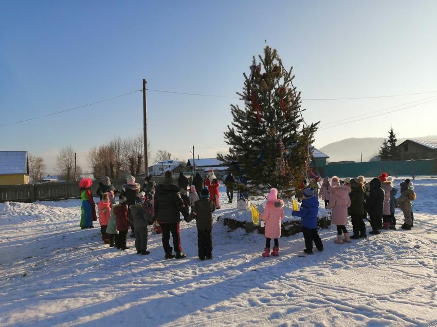 Открытие новогодней елки в с.Малета