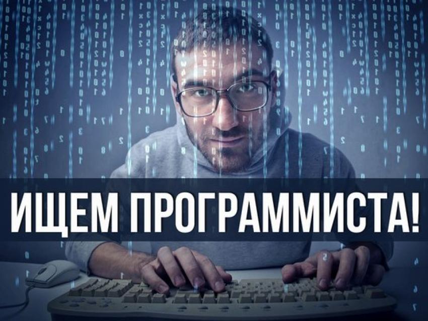 подработка программист 1с удаленная работа