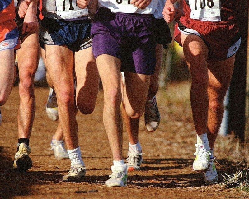 Три золотых медали привезли забайкальские спортсмены с Чемпионата и Первенства СФО по легкоатлетическому кроссу