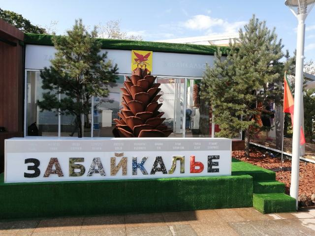 Забайкальский край представлен на Восточном экономическом форуме