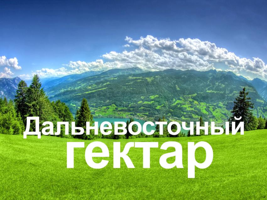 Дальневосточный гектар.